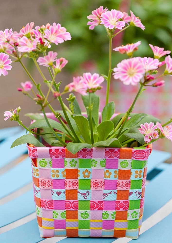 blumenk rbchen flora pink von overbeck and friends deko. Black Bedroom Furniture Sets. Home Design Ideas